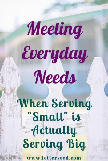 Meeting Everyday Needs Pin